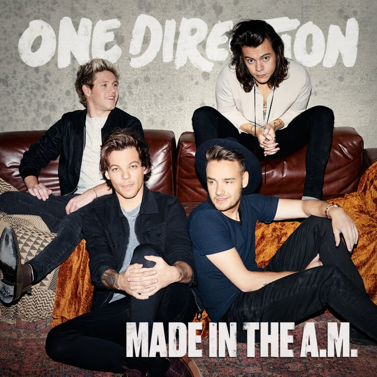 justin bieber one direction made in the am