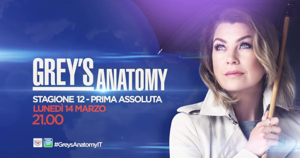Grey's Anatomy 12