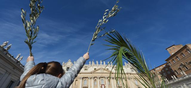Domenica delle palme 2016 canti e liturgia orario for Palma di san pietro