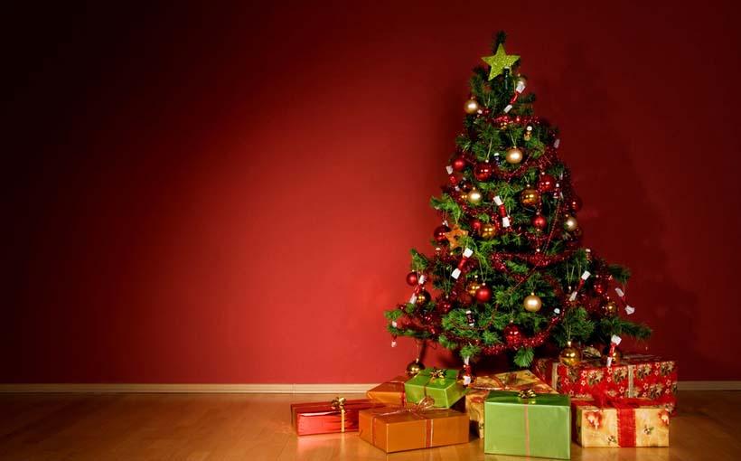 Albero Di Natale Vero Come Farlo Sopravvivere.Albero Di Natale 2016 Idee Decorazioni Come E Quando Farlo