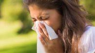 allergia polline 2017