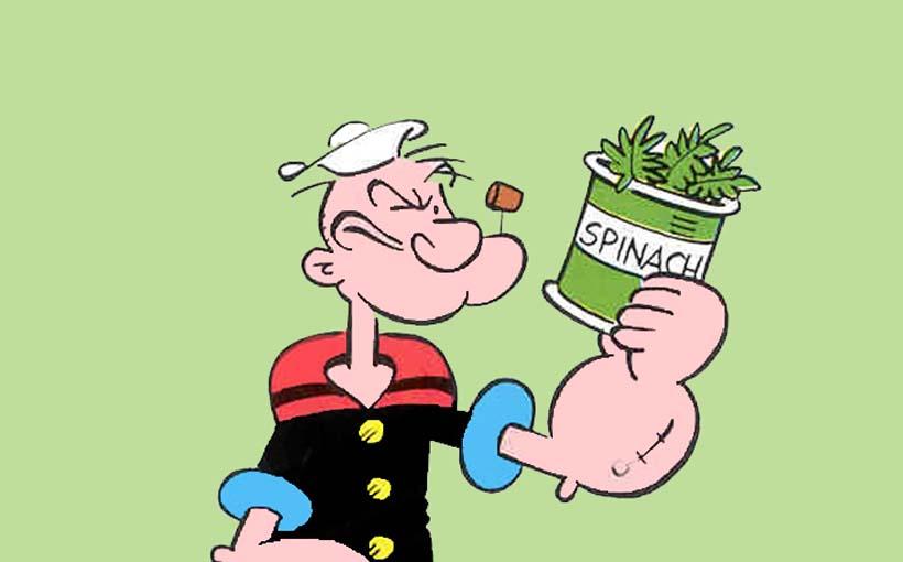 Connu Alimenti ricchi di ferro assimilabile: tabella cibi vegetali e  GY56