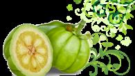 Garcinia Cambogia Truffa