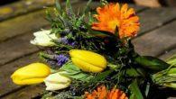 Spedire fiori all'estero