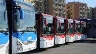 Bus low cost in Italia