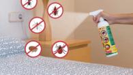 Bug Eraze
